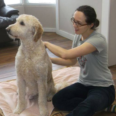 all-paws-massage-marta-02-vancouver-east-veterinary