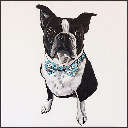petsy-studio-french-bulldog-01-vancouver-east-veterinary