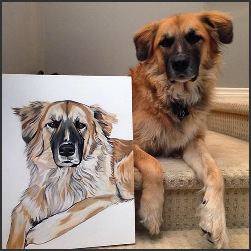 petsy-studio-golden-retriever-vancouver-east-veterinary